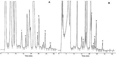 RP-HPLC-FL chromatograms of (A) white wine and (B) red wine