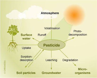 Pesticides fate and degradation