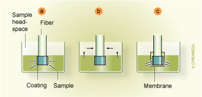 Fibre SPME modes: (a) direct extraction, (b) headspace SPME, 